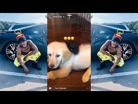 Xxx Mp4 XXXTENTACION Playing With He S Dog Sora He's Funny Moments 🕊LLJ🕊😢🖤 3gp Sex