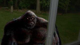World Bigfoot Radio #14 ~