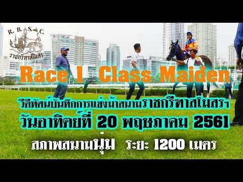 Xxx Mp4 Thailand Horse Racing 2018 May 20 ม้าแข่งเที่ยว 1 ชั้น Maiden 3gp Sex