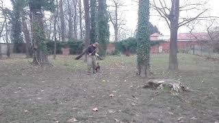 Liluska   obranyHD,1280x720,Mp4 online video cutter com