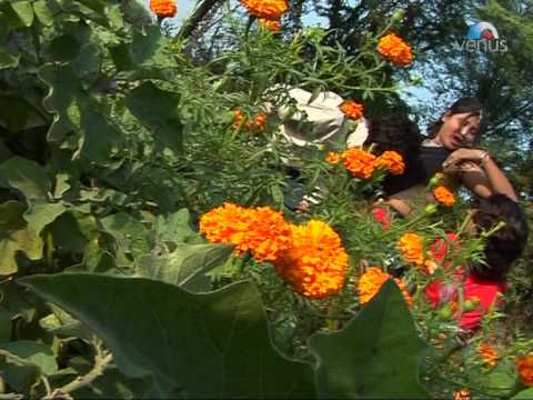 Xxx Mp4 Chhori Boli Saadi Chhe Rajasthani Sexy Video Songs Shakuntala Rao 3gp Sex