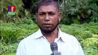 Shamol Bangla EP 429