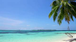 Relaxing Sounds of Waves   2 Hours   Tropical Beach Relaxation