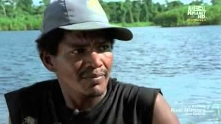 River Monsters S05E03 Killer Torpedo HDTV XviD AFG 1 clip0