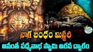 Anantha Padmanabha Swamy Treasure Naga Bandam Mystery Revealed | Remix King