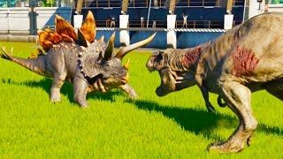 Stegoceratops Vs Every Carnivore in Jurassic World Evolution