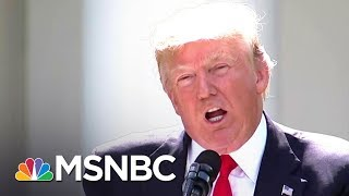 This Is Your Brain On Donald Trump | The Beat With Ari Melber | MSNBC