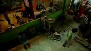 Raging Phoenix music video