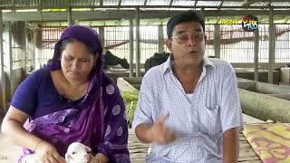 দীপ্ত কৃষি - গরুর খামার/পাবনা, পর্ব ৬৩
