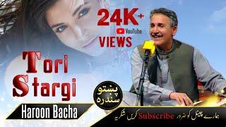 Haroon Bacha | Tori Stargi | Pashto Song Full HD