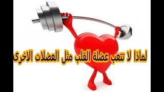 هل تعلم لماذا عضلة القلب لا تتعب مثل عضلات الاخري ؟