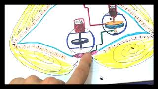 Atención!!! APARATO QUE LEVITA  - (Ideal Para Feria De Ciencias) - PROYECTO ANTIGRAVEDAD