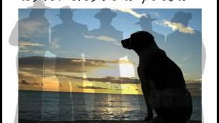 LOS ROMEROS DE LA PUEBLA mi perro
