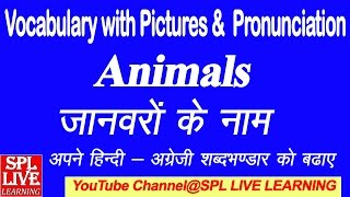 English Vocabulary   Animals Name with Pictures and Hindi meaning with Pronunciation