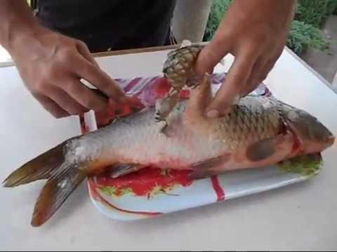 как чистить рыбу окунь от чешуи видео