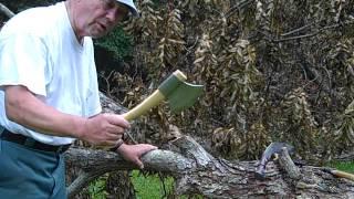 Cutting up Backyard Trees, Phases I & II