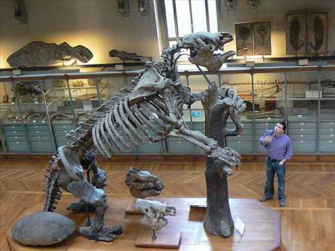 animales prehistoricos parte 2 megatherium