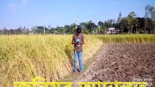 Junior bangla new adalot
