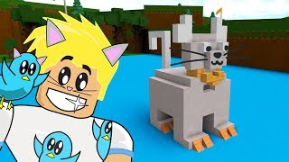 MY PURRRFECT KITTY BOAT / ROBLOX BUILD A BOAT TO TREASURE GAME
