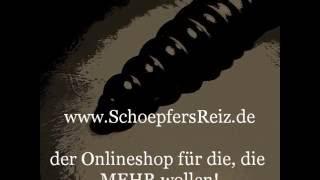 www.SchoepfersReiz.de - Acht Ringe - Buttplug - Anal - Ass - Analplug - Assplug-