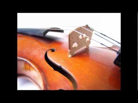 Mozart - Symphony No. 20 in D, K. 133 [complete]