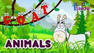 Learn Wild & Pet Animals names for children(kids) in english | Domestic Animals Pictures and sounds