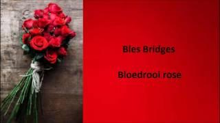 Bles Bridges - Bloedrooi rose