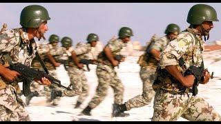 كم عدد الجيش المصري
