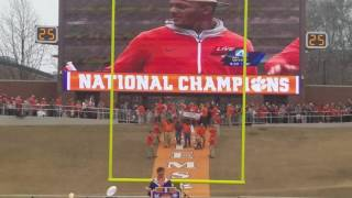 TigerNet.com -  - Clemson National title celebration - 1981 team runs down the hill