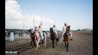 Beautiful Desi Horses Of Pakistan (Trailer HD) | Top Horse Riders in Pakistan