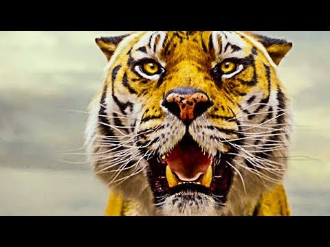 Xxx Mp4 Life Of Pi Official Trailer HD 3gp Sex