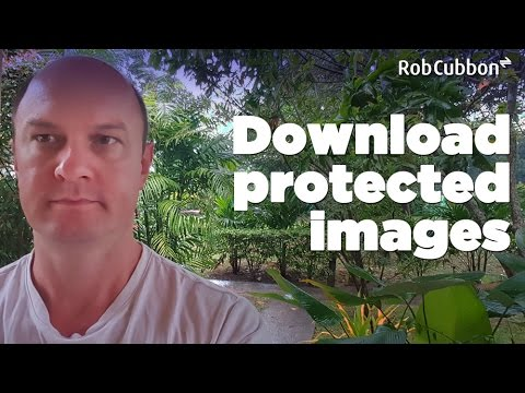 Download Protected Images from Browser when Right-Click