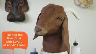 Painting A Boer Goat With Layers of Acrylic Glaze