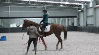 First Ride on a Young Green Horse - FearLESS Friday TV Ep 33
