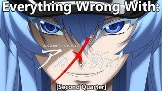 Everything Wrong With: Akame Ga Kill! | (Second Quarter)