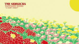 The Sidekicks -