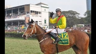 Jacqueline Ridden By Richard Hughes Wins The Indian Derby 2010