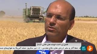 Iran Mechanized wheat harvest, Yazd province برداشت مكانيزه گندم استان يزد ايران