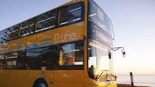 Northern Beaches B-Line Bus Service (15 sec)