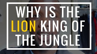 Why is the Lion King of the Jungle? | Salem Soni