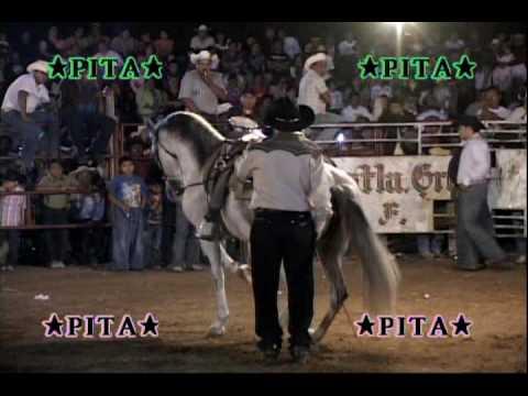 ¡¡¡Que espectáculo¡¡¡La Candelaria con toros caballos y Banda las Brisas