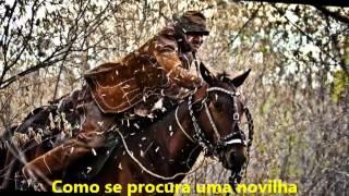 MASTRUZ COM LEITE - Saga de Um Vaqueiro - TRADIÇÕES NORDESTINAS