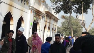 Baba Murad Shah Ji Live Streaming