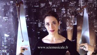 hYrtis (aka Gladys Hulot) présente les lames sonores de Alexis Faucomprez