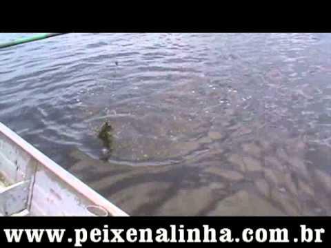 Pescaria de Espadas ponto Bambusal canal de Bertioga
