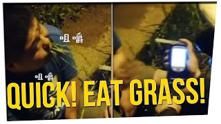 Drunk Driver Eats Grass When Stopped by Police?! ft. Steve Greene & Nikki Limo