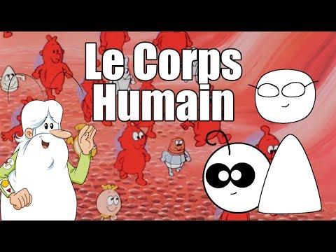 Xxx Mp4 Point Culture Le Corps Humain 3gp Sex