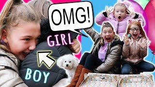 OUR SPECIAL SURPRISE BABY GENDER REVEAL! - EMOTIONAL!