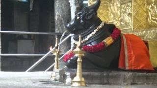 Miracle of Mallishwaram Nandhi Temple