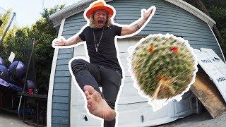 Cactus Hacky Sack! - The Dudesons